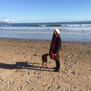 DogWalking Penarth Barry DInasPowys
